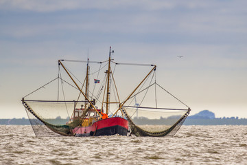 Shrimp fishing cutter ship on the Wadden sea