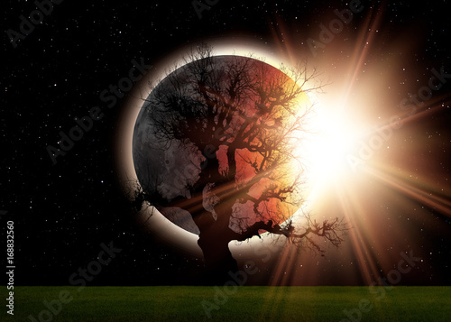 Wall mural Solar Eclipse