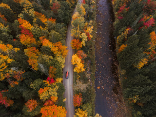 Aerial shot of car driving through autumn forest road