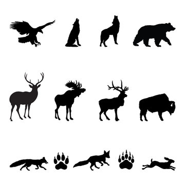 Forest Animals Silhouettes