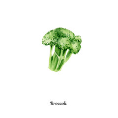 Handpainted watercolor poster with broccoli
