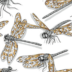 Seamless pattern with golden different dragonfly on a white background. Vector illustration.