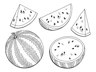 Watermelon graphic black white isolated sketch illustration vector
