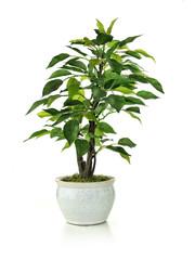 Miniature Artificial Tree