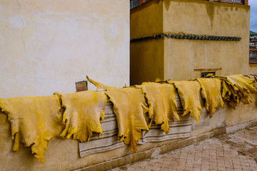 Animal skins drying in a tannery in Fes, Morocco