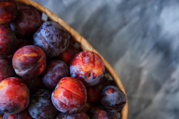 Overhead still life of purple plums in basket on grey textured background with copy space