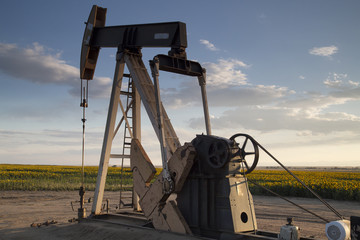 Oil Pump in Sunflower Fields