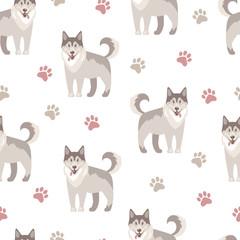 Flat vector illustration. Husky, nice friendly pet. Seamless pat