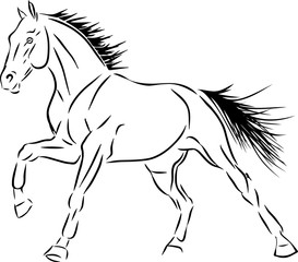 Sketch of a cantering horse.