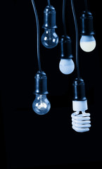 five blue electric lamps in receptacle isolated on black