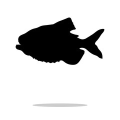 Piranha fish black silhouette aquatic animal