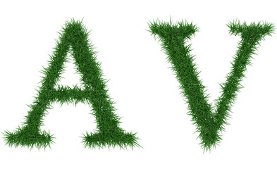 Av - 3D rendering fresh Grass letters isolated on whhite background.