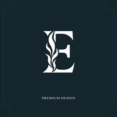 Elegant letter E. Graceful royal style. Calligraphic beautiful logo. Vintage drawn emblem for book design, brand name, business card, Restaurant, Boutique, Hotel. Vector illustration