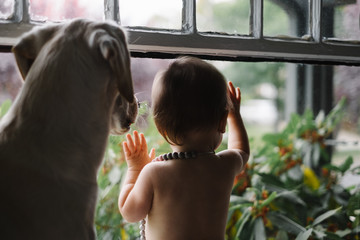Baby and dog look out window