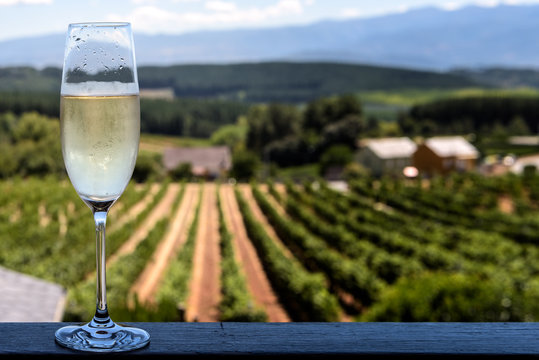 Chilled glass of champagne with vineyards background; focus on glass