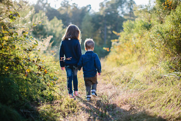 Brother and sister holding hands while walking outside