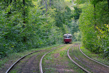 Tram goes through the forest. Kiev, Ukraine
