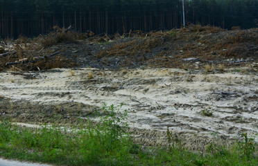 The field is prepared for illegal amber mining in Zhytomyr region, August 2017.