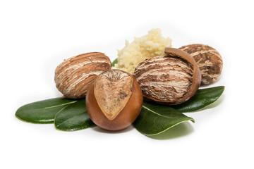 Shea nuts. Vitellaria paradoxa