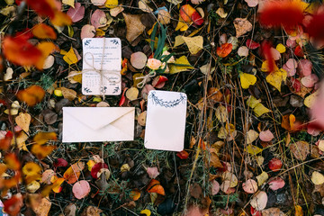 Mockup of brochure or bridal card against autumn foliage with empty place for text