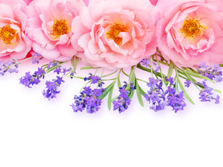 Pink curly open roses and provence lavender bouquet