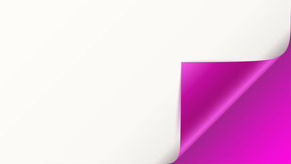 Page curl with shadow on blank sheet of paper. Vector curled corner of white paper with shadow. Close-up isolated on pink background. Paper sticker, 3D illustration