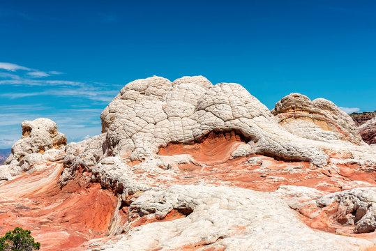 Bizarre Sandstone in White Pocket, Arizona.