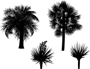 four black palm silhouettes isolated on white