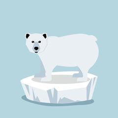 Cute Polar bear  on ice floe