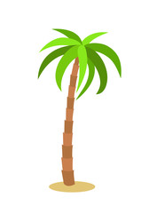 Palm tree. Isolated icon on white background. Vector illustration.