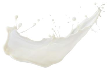 milk splash isolated on a white background