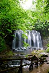 夏の達沢不動滝(猪苗代町)