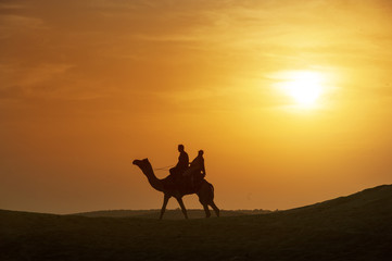 beautiful silhouette camel caravan with sunset background at Thar desert Jaisaimer,india
