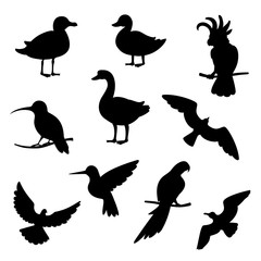 Vector set of silhouettes of birds.