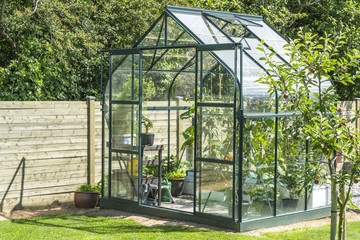 Greenhouse in a garden near a wooden fence