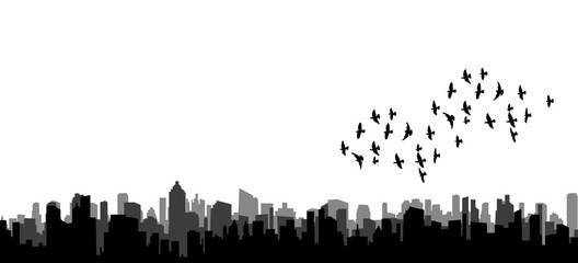 isolated silhouette of flying birds, flock