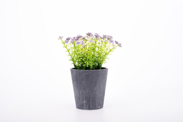 small artificial tree in a pot isolated in white background.