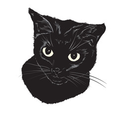 Vector sketch. Black cute cat on a white background.