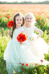 little girl model, childhood, fashion, wedding, summer concept - two lovely young girls in white and blue wedding dress posing with a bouquet of poppies in a sunny field of spring flowers