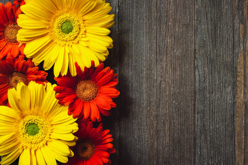 Daisies on Rustic Wooden Table