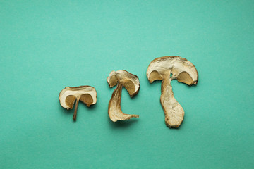 Three slices of dry boletus mushrooms isolated on green background.