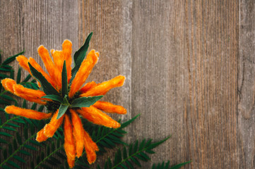 Orange Lion's Ear on Rustic Table