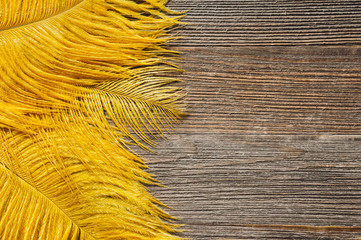 Ostrich Feathers on Rustic Wooden Table