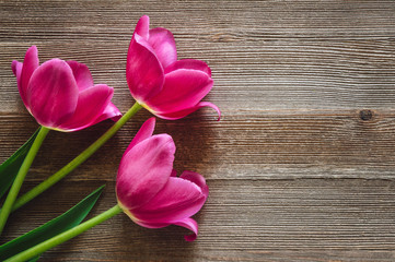 Three Pink Tulips on Rustic Wooden Table