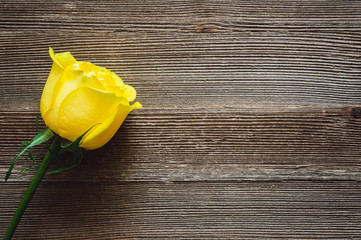 Yellow Rose on Rustic Wooden Table