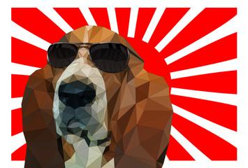 サングラスをかけた犬と紅白の放射線の背景