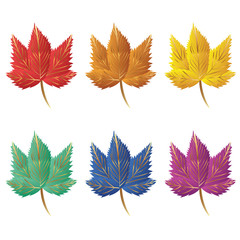 Collection of color autumn leaves.  Autumn leaves set. Maple leaves. Collection of color autumn leaves for design, banner, background, ornament, and discount. Gradient autumn leaves.