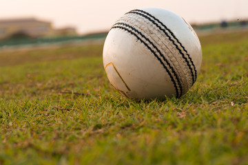 Old ball for cricket in india