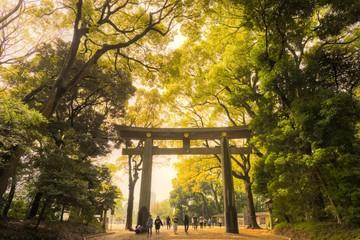 Gate of MEIJI-JINGU