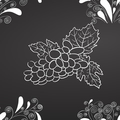 Wine Grapes and Leafs Chalk on Blackboard